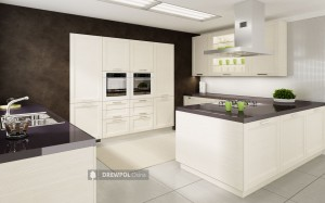 white modern kitchen idea